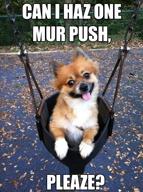 CAN I HAZ ONE MUR PUSH, PLEASE?