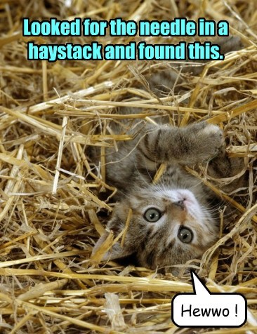 Looked for the needle in a haystack and found this.
