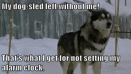 My dog-sled left without me!  That's what I get for not setting my alarm clock.