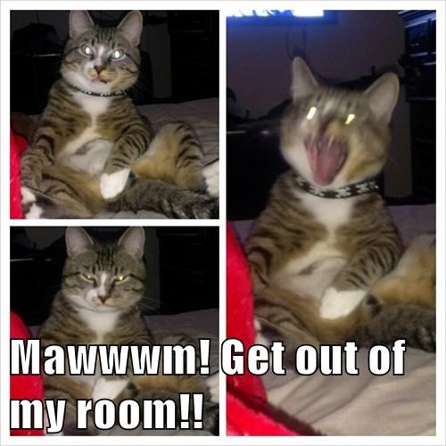 Mawwwm! Get out of my room!!
