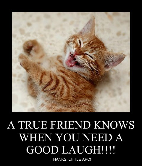 A TRUE FRIEND KNOWS WHEN YOU NEED A GOOD LAUGH!!!!