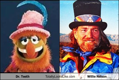willie nelson,dr-teeth,totally looks like,funny