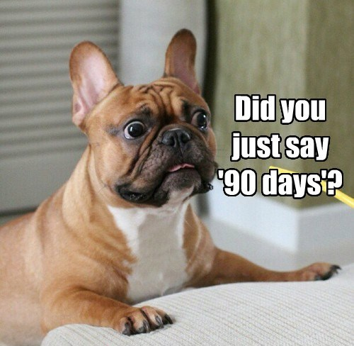 Did you just say  '90 days'?