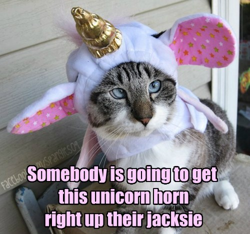 Your Costuming Displeases Kitteh