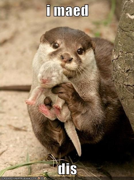 baby,otter,i made this