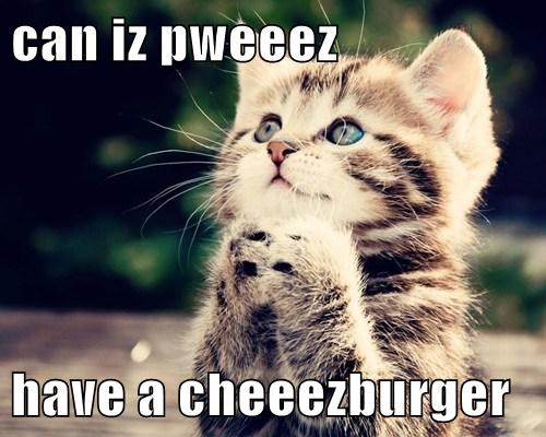 can iz pweeez  have a cheeezburger
