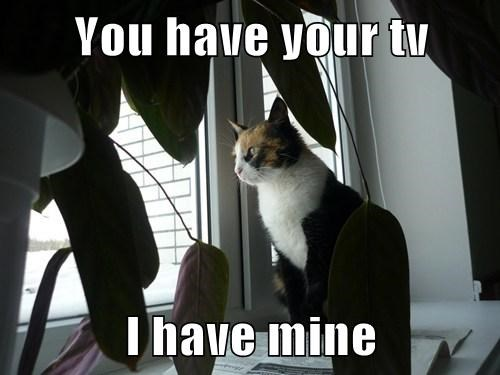 You have your tv  I have mine