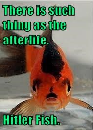 There is such thing as the afterlife.  Hitler Fish.