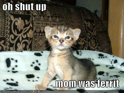 oh shut up  mom was ferrit