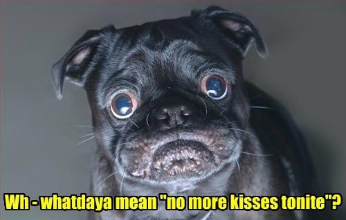 Sad,kisses,funny
