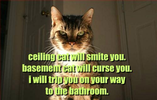 ceiling cat will smite you. basement cat will curse you. i will trip you on your way  to the bathroom.