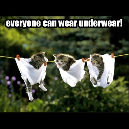 everyone can wear underwear!