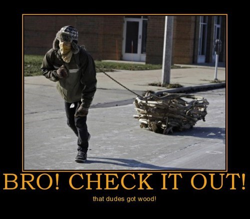 dragging,bro,wood,funny