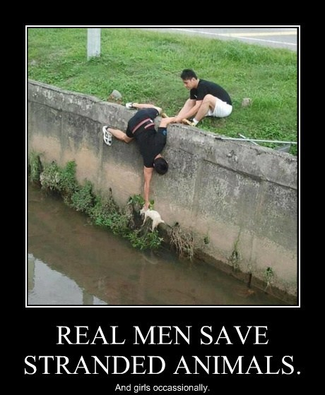 REAL MEN SAVE STRANDED ANIMALS.
