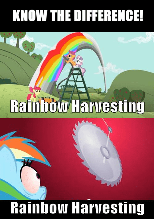 rainbows,know the difference,rainbow dash