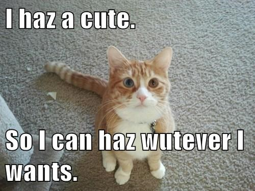 I haz a cute.  So I can haz wutever I wants.