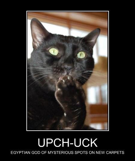 UPCH-UCK