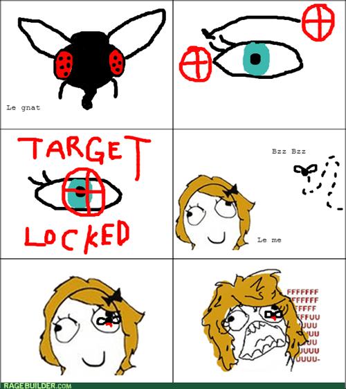 gnats,eyes,flies