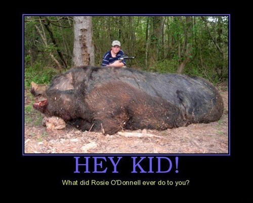 wtf,rosie-odonnell,pig,funny