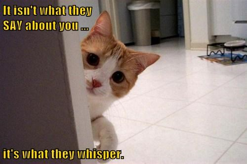 It isn't what they                                                               SAY about you ...        it's what they whisper.