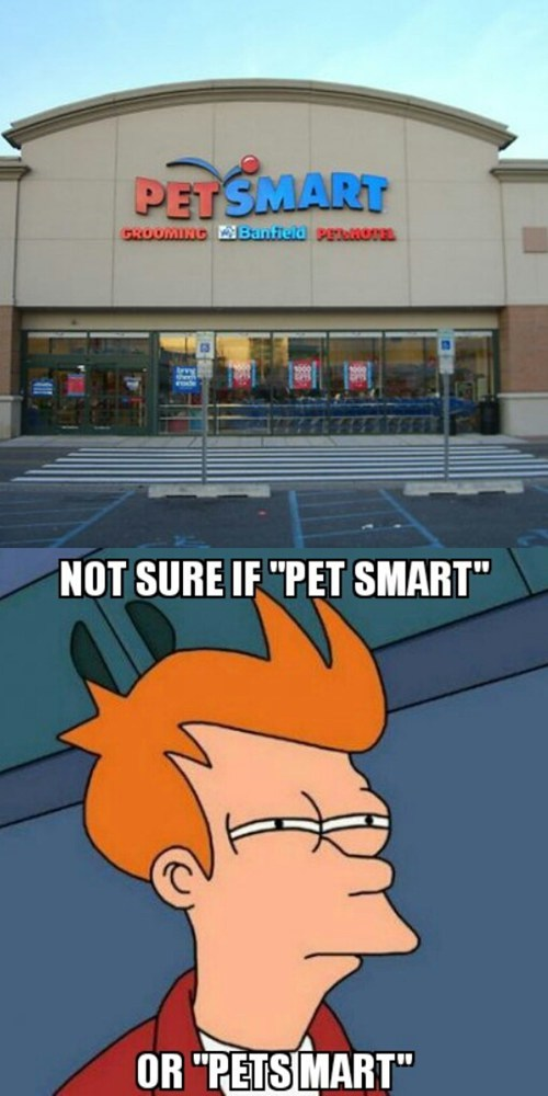 not sure if,fry meme,petsmart,Memes
