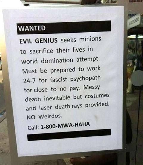 Minions Wanted