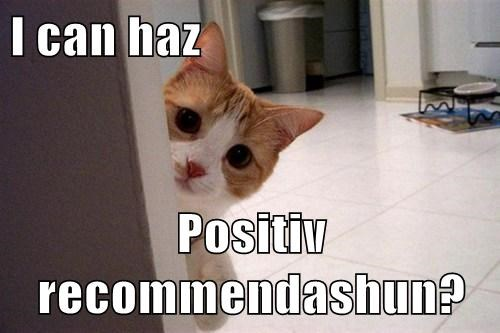 I can haz  Positiv recommendashun?