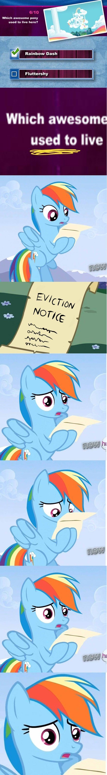 What Happened, Rainbow Dash?