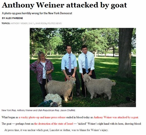 The Best Weiner Headline We've Seen Yet
