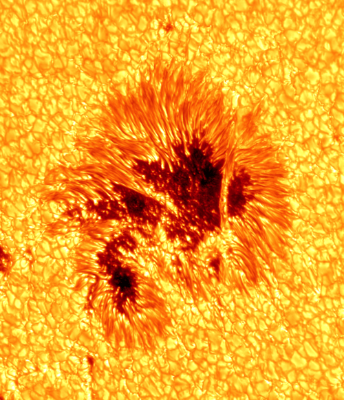 A Close Clear Image of a Sunspot