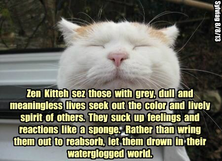 Zen  Kitteh  sez  those  with  grey,  dull  and meaningless  lives  seek  out  the  color  and  lively spirit  of  others.  They  suck  up  feelings  and reactions  like  a  sponge.   Rather  than  wring  them  out  to  reabsorb,  let  them  drown  in  th