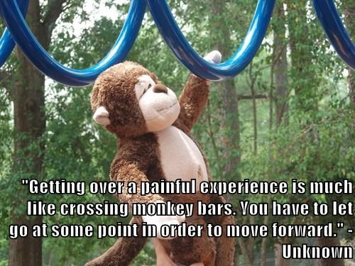 """Getting over a painful experience is much like crossing monkey bars. You have to let go at some point in order to move forward."" -Unknown"