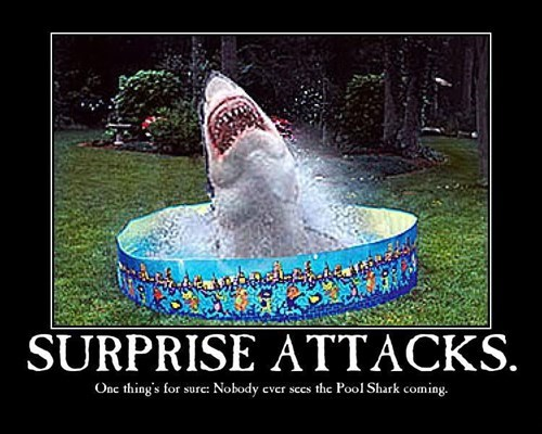 pool,surprise,shark,funny