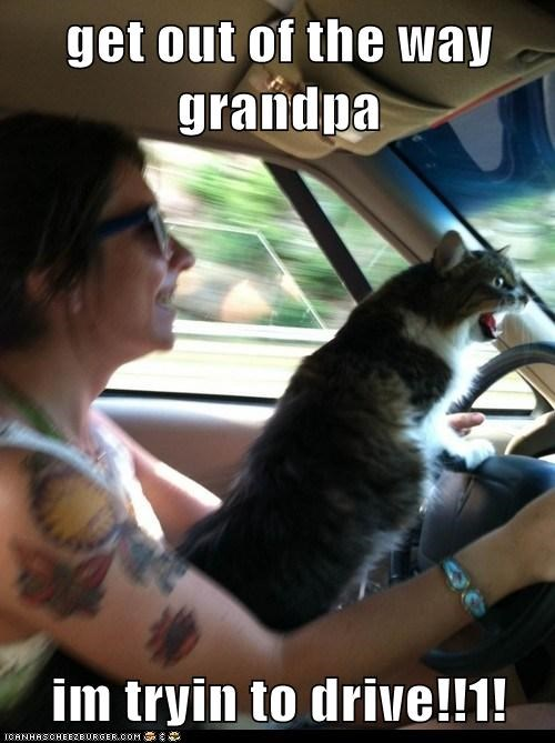 get out of the way grandpa  im tryin to drive!!1!