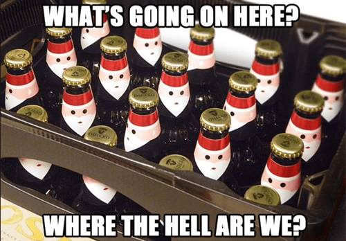 A Group of Very Confused Bottles