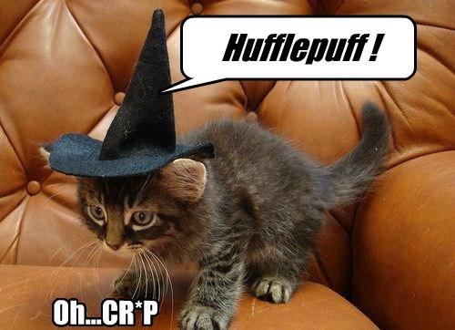 Harry Potter,gryffindor,funny