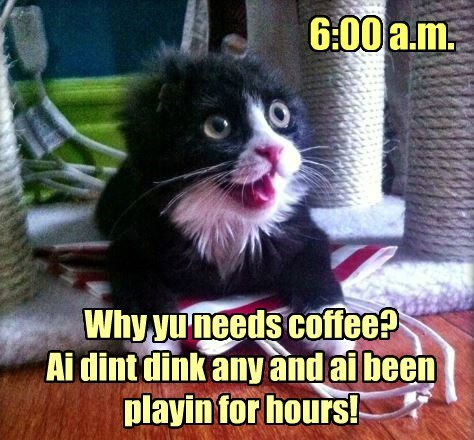 Pot of coffee pleez!