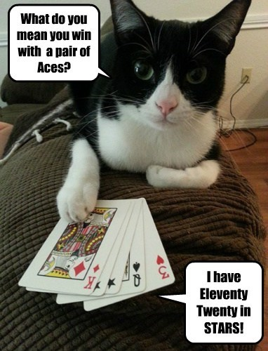 Stoopy Hoomins Can't Play Poker