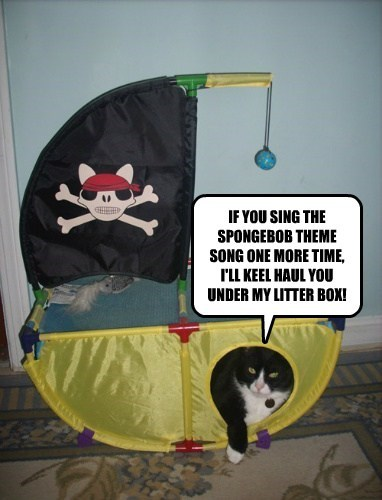 IF YOU SING THE SPONGEBOB THEME SONG ONE MORE TIME, I'LL KEEL HAUL YOU UNDER MY LITTER BOX!