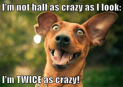 crazy,deceiving,funny