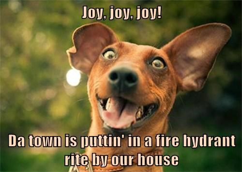 Joy, joy, joy!  Da town is puttin' in a fire hydrant rite by our house