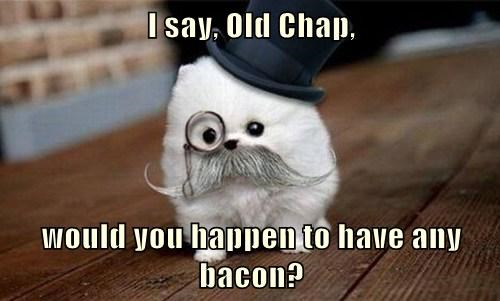 I say, Old Chap,  would you happen to have any bacon?