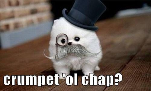 crumpet 'ol chap?