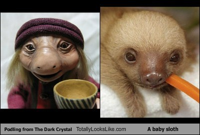 baby sloths,The Dark Crystal,totally looks like,sloths,funny,podling