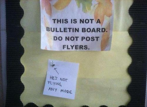 bulletin boards,flies