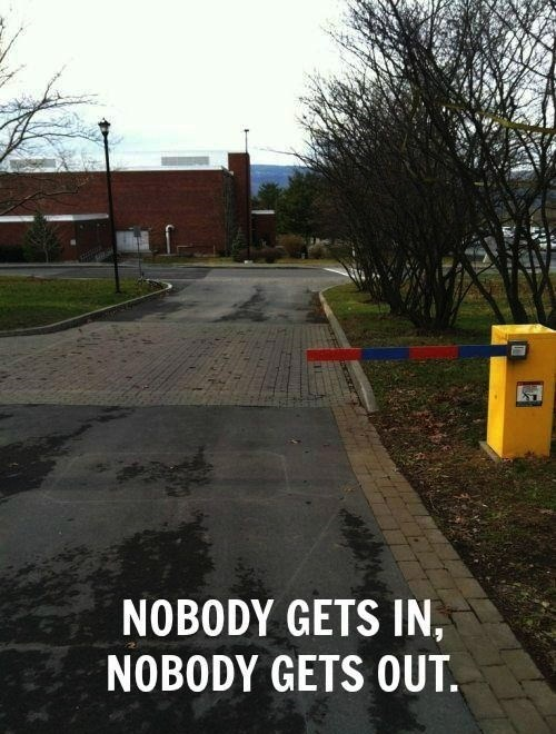 The Most Useless Gate Thingy Ever