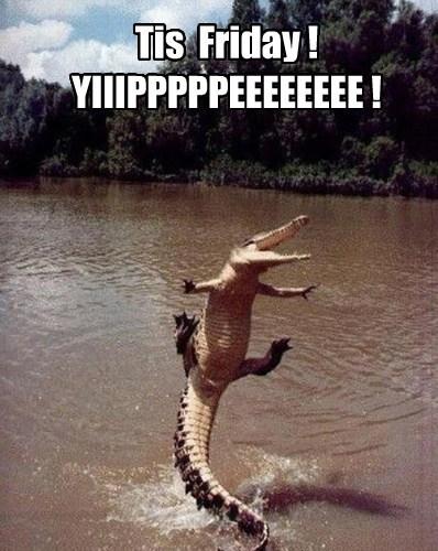 Tis  Friday ! YIIIPPPPPEEEEEEEE !