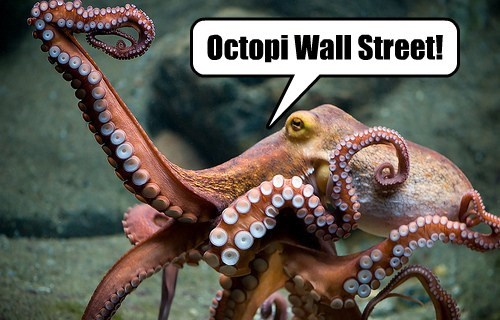 Octopi Wall Street!