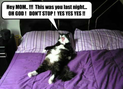 Hey MOM.. !!!  This was you last night... OH GOD !   DON'T STOP !  YES YES YES !!