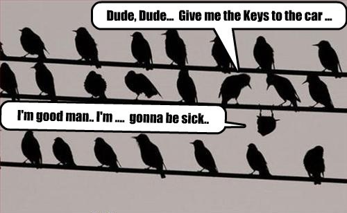 Dude, Dude...  Give me the Keys to the car ...